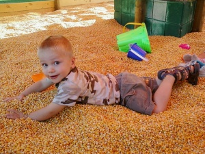 Aanders in corn crib