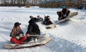 triple sled