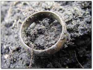 dirty wedding ring