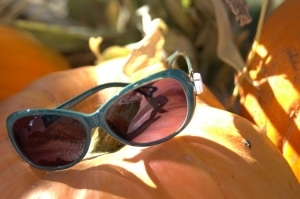 sunglasses and pumpkins