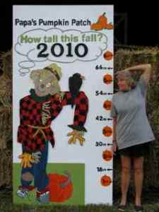 how tall this fall