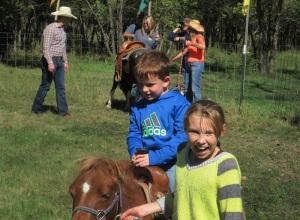 2013 pony rides