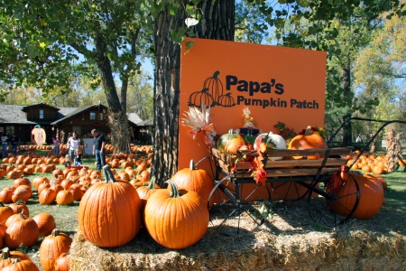 Papa's sign by big tree